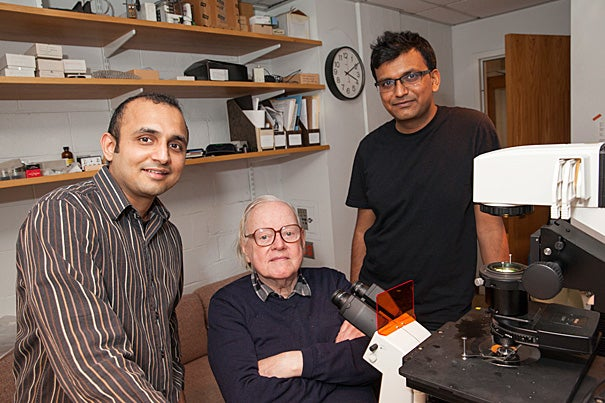 Abhishek Shrivastava (right) is the lead author of a recent paper about the discovery of a previously unknown rotary motor in bacteria. With him are postdoctoral fellow Pushkar Lele and Howard Berg, Herchel Smith Professor of Physics and professor of molecular and cellular biology.