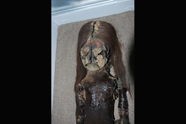 The head and torso of a Chinchorro mummy at San Miguel de Azapa Museum in Arica, Chile. During the past decade, many of the Chinchorro mummies have begun to rapidly degrade.