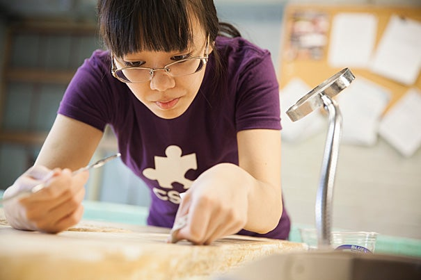Rebecca Chen '16 works to repair a relief, which will adorn the walls of the third floor Mesopotamian gallery of the Harvard Semitic Museum.