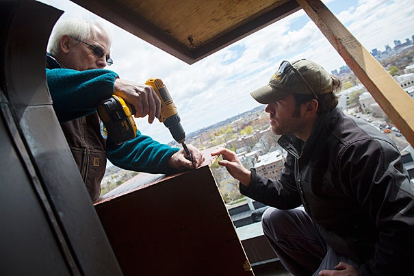 Thomas French (left), assistant director of the Massachusetts Division of Fisheries and Wildlife, and state wildlife biologist David Paulson install a nest box high on Memorial Hall's tower in hopes that a nesting pair of peregrine falcons will one day make it their home.