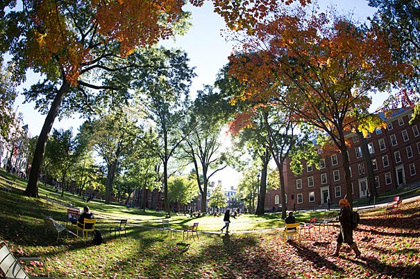 In Harvard Yard, sunlight bolts through orange and green leaves during Fall at Harvard University. Kris Snibbe/Harvard Staff Photographer