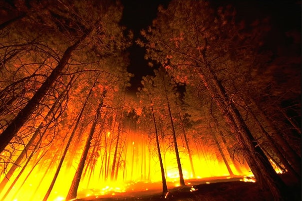 """""""Certain flame behaviors may warn when eruptive transitions are likely to occur,"""" said postdoc fellow Jerome Fox. """"In a forest fire, these behaviors could warn firefighters to keep their distance."""""""