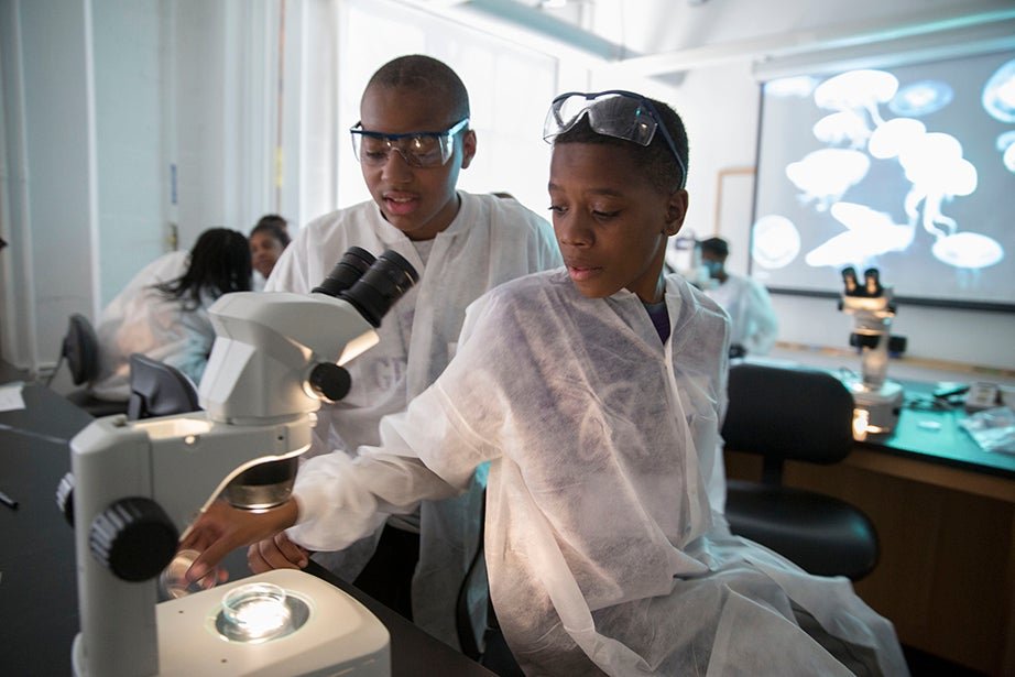 Mott Hall Bridges Academy students Aaron Abdulmalik (at microscope) and Jermont Haines learn about the uses of zebrafish. Kris Snibbe/Harvard Staff Photographer