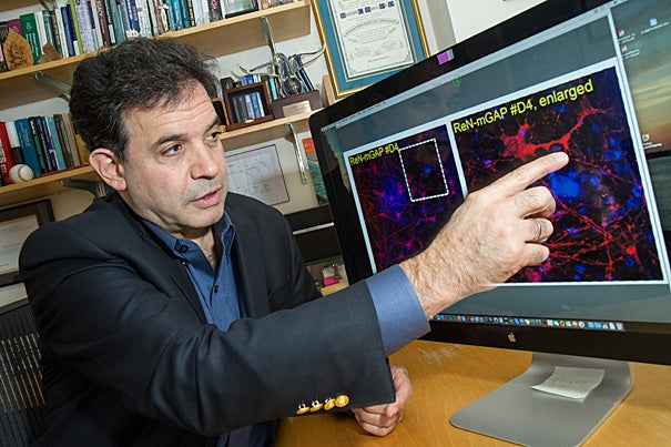 Rudolph Tanzi of Harvard Medical School, recently named to Time's list of the most influential people in the world, talks about the promising future of Alzheimer's research.
