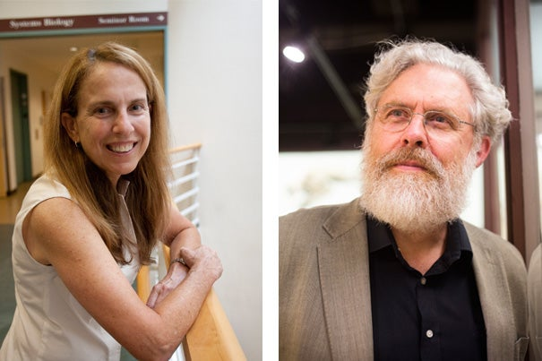 "In the Wyss Institute's new podcast, ""Disruptive,"" Harvard professors and Wyss core faculty members Pamela Silver and George Church explore the changes that can be made to an organism's genome."