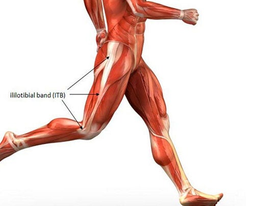 The IT band runs along the outside of the thigh, from just above the hip to just below the knee, and is made up of fascia, an elastic connective tissue found throughout the body.
