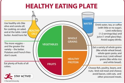 The findings from three studies have determined  that healthier eating habits cumulatively prevented 1.1 million premature deaths over 14 years. The Healthy Eating Plate was created by nutrition experts at the Harvard T.H. Chan School of Public Health.