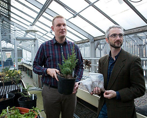 Arnold Arboretum scientists Kyle Port (left) and Michael Dosmann have traveled far and wide to help collect species of importance, with a focus on endangered plants that would strengthen the scientific value of the Arboretum's living collections.