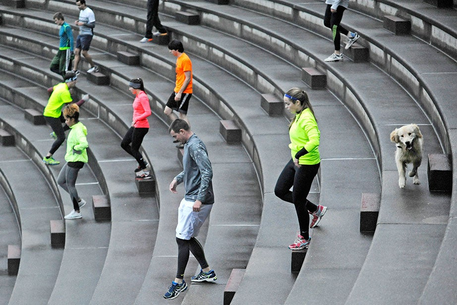 Colors ablaze on a damp, overcast morning, November Project members traipse down the Harvard Stadium steps early on a Wednesday morning, accompanied by a free-running canine choosing its own particular path.