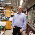 Small-molecule therapeutics developed in the laboratory of Harvard scientist Matthew Shair offer an innovative approach to cancer treatment, targeting enzymes that regulate transcription.