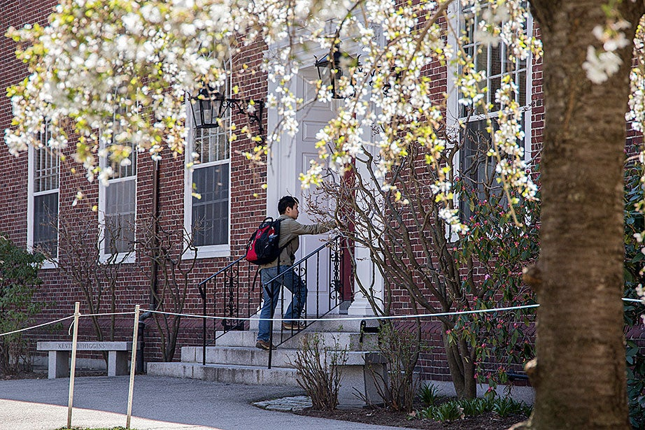 A blooming spring morning outside the Kirkland House dining hall.