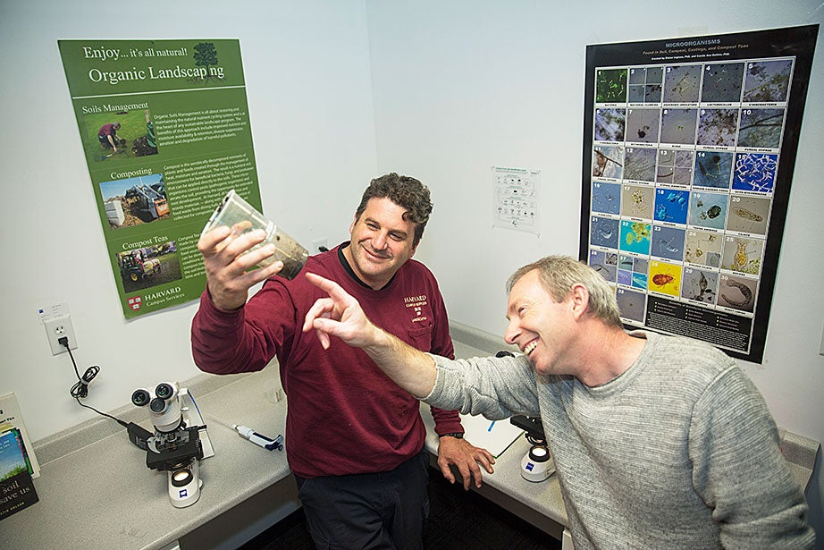 """John Carroll, horticulturist, and Kieran Clyne, operations supervisor for landscape and recycling, analyze soil samples in the organic landscaping indoor """"lab"""" at 156 Western Ave., Allston. The new lab will be used to test and optimize the """"compost teas"""" that are part of the University's internationally recognized organic landscaping program."""