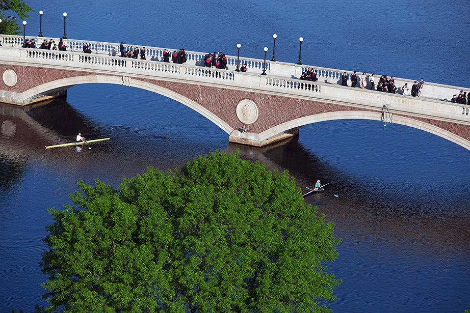 Harvard Business School graduates cross Weeks Bridge on their way to the 365th Commencement Exercises in Tercentenary Theatre. Rose Lincoln/Harvard Staff Photographer