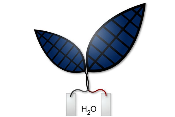 """A new """"bionic leaf"""" system uses solar energy to produce liquid fuel."""