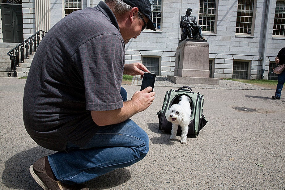 Mike Rorro and his dog, Charlie, came from California to live in Cambridge this month.