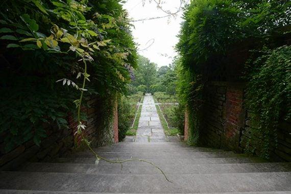 The grounds of Dumbarton Oaks Essdras M Suarez/© EMS Photography