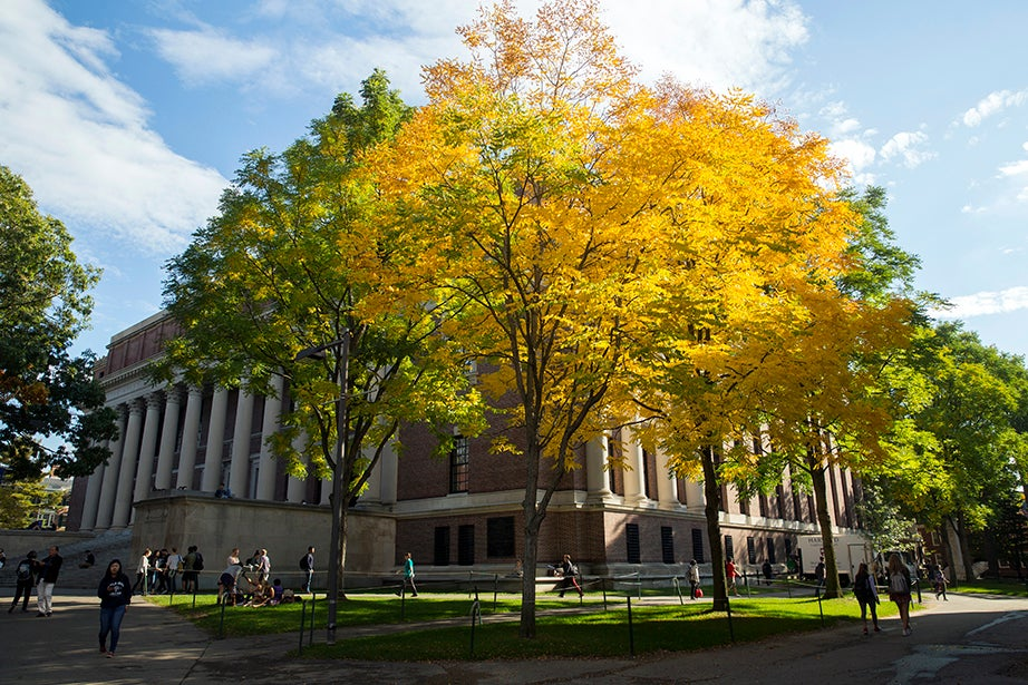 Colorful foliage surrounds Widener Library in Harvard Yard. Jon Chase/Harvard Staff Photographer