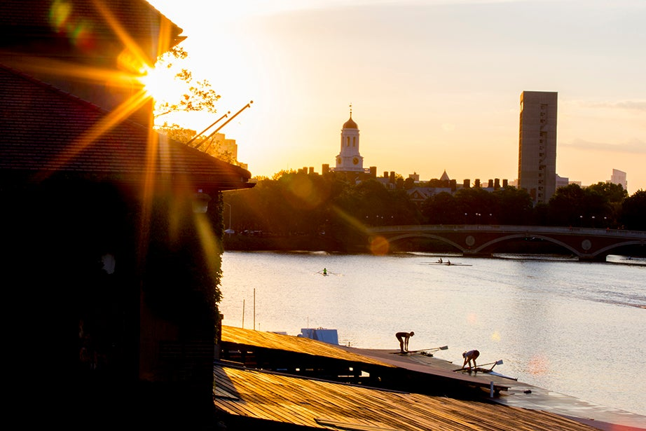 Warm light is cast along the dock at Weld Boathouse along the Charles River. Rose Lincoln/Harvard Staff Photographer