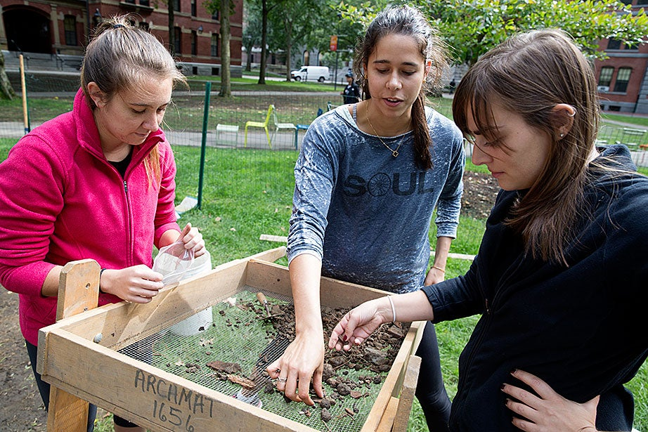 Ronni Cuccia '19 (from left), Alyssa Mehta '18, and Lexy Hartford, a fourth-year digital teaching fellow, examine excavated debris in a sifter.