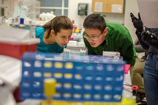 "From the left, the freshman students Jessica Diaz and William Gao conduct an experiment to study yeast cells during the Lab Session ""Genetics of Organelle Function in Budding Yeast"" guided by the instructor James Martenson, a Post-Doctoral Fellow in Molecular and Cellular Biology, in the Northwest Building Labs. Photo by Silvia Mazzocchin"