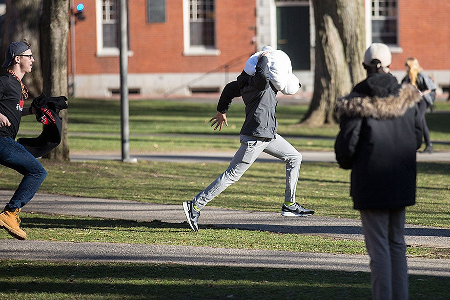 A Pforzheimer House resident (left) chases down a renegade student who stole a PfoHo polar bear head. Jon Chase/Harvard Staff Photographer