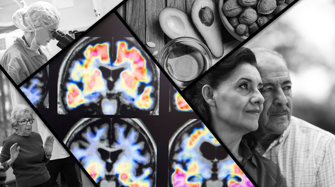Harvard Study Shows Dangers Of Early >> Harvard Researchers Plot Early Attack Against Alzheimer S Harvard