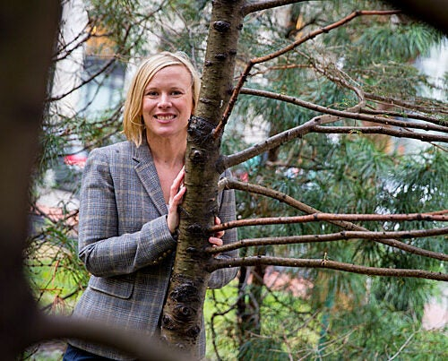 While earning her third degree in the Extension School's sustainability program, Amanda Rich began working on a proposal to plant trees in low-income neighborhoods as a way meet Boston's carbon emissions reduction goals.