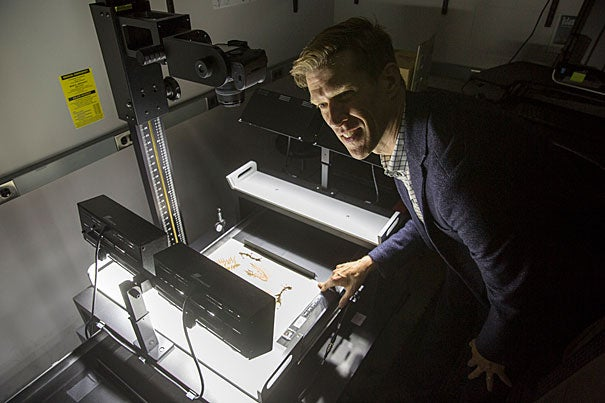 """Hundreds of new images from Thoreau's  collection of plant specimens will be available for viewing online. """"I think it's fair to say that the data that live inside these cabinets has been dark for far too long,""""  said Charles Davis (pictured), director of the Harvard University Herbaria."""