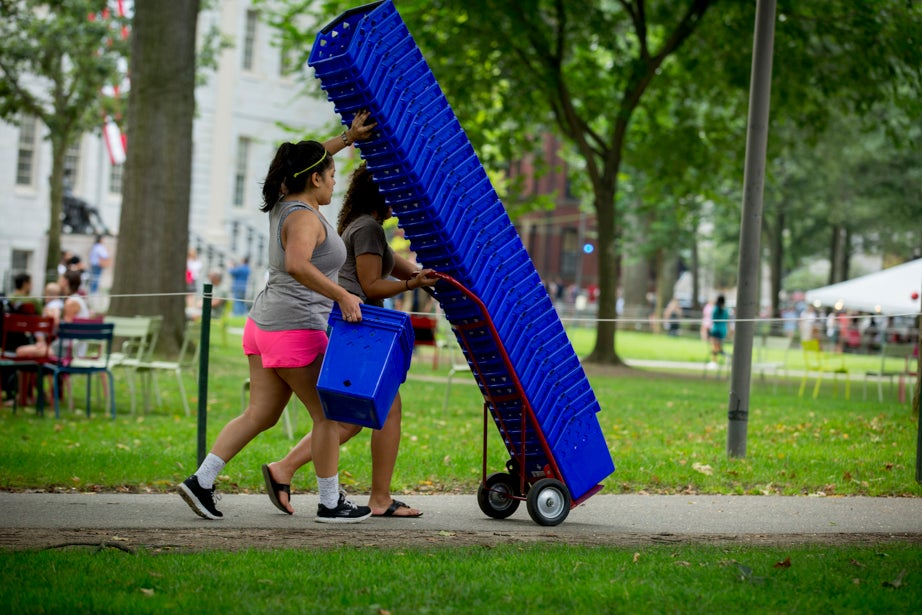Transporting recycling bins is a balancing act. Rose Lincoln/Harvard Staff Photographer