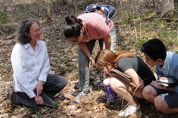 """Seattle Times environmental reporter Lynda Mapes (left) turned her fellowship year at Harvard Forest, during which she focused on a single oak tree, into a book titled """"Witness Tree."""""""