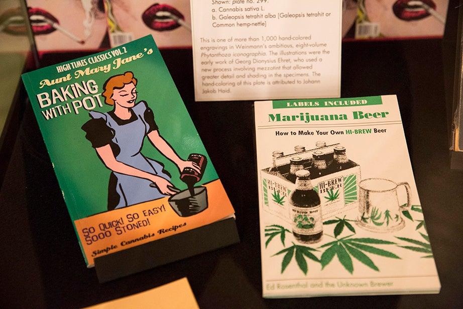 The collection contains dozens of marijuana cookbooks. Jon Chase/Harvard Staff Photographer