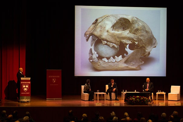 Eduardo Matos Moctezuma discusses discoveries at Templo Mayor in a lecture the National Museum of Anthropology in Mexico City.