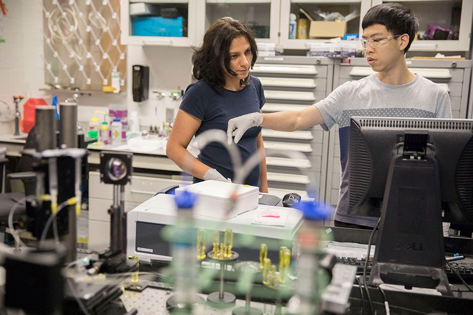 Researchers measure the absorption of light in a fluid sample using a UV-visible spectrometer in the LEED Gold-certified Weitz Lab. Shima Parsa (left) is a postdoctoral candidate and Zhehan Zhong is a fellow in applied physics