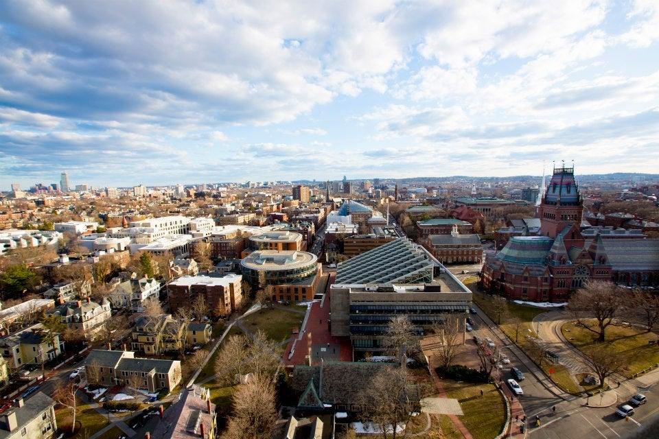 Harvard skyline