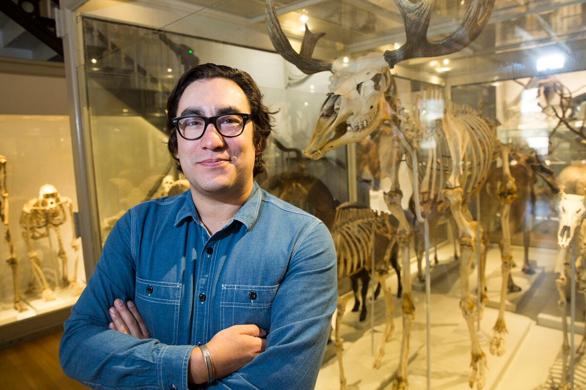 Tristan Ahtone, pictured in the Harvard Museum of Natural History, is the fourth Native American journalist selected as a Nieman Fellow since the Nieman Foundation was established in 1938.