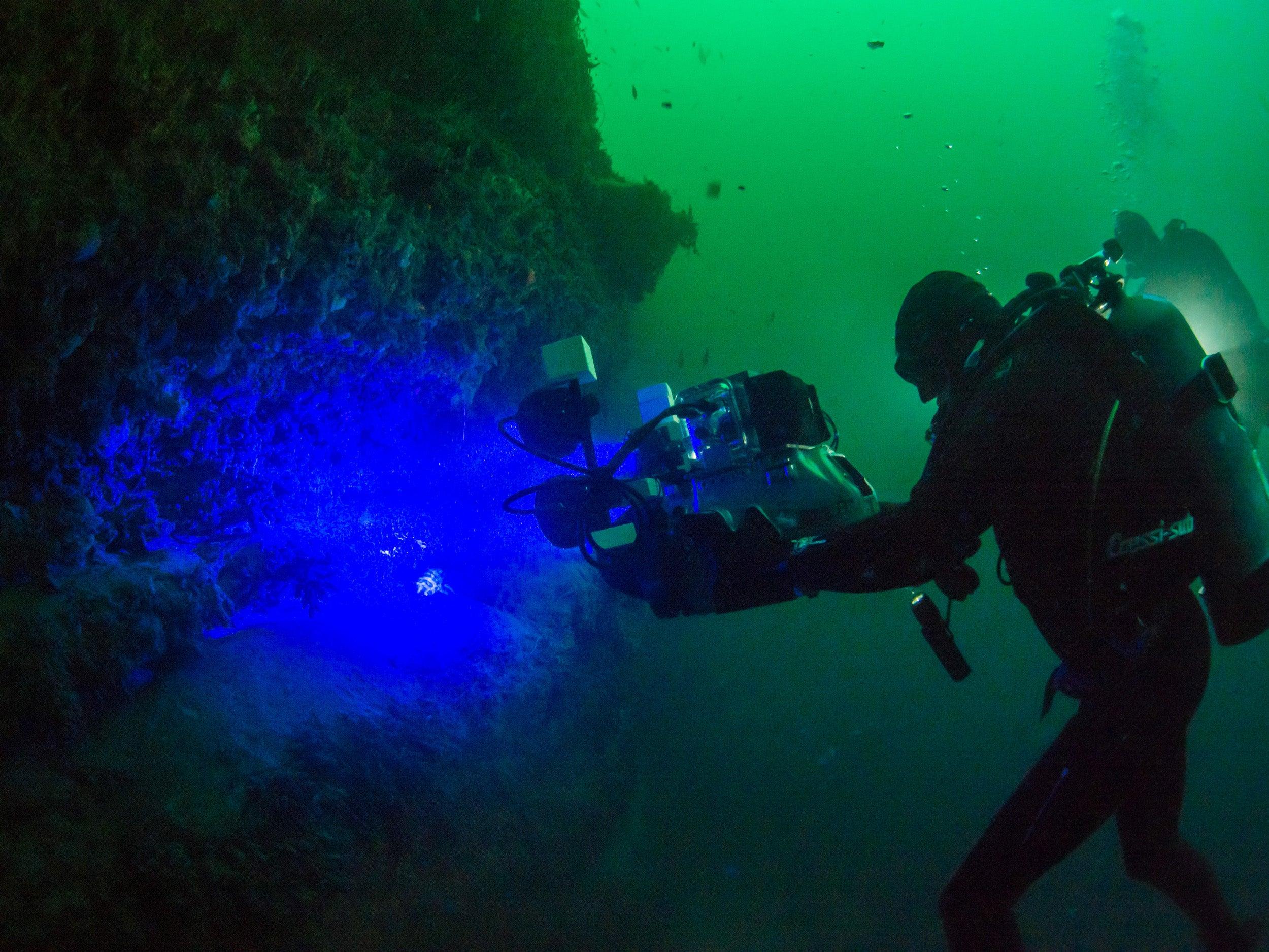 David Gruber films bioflourescence underwater.