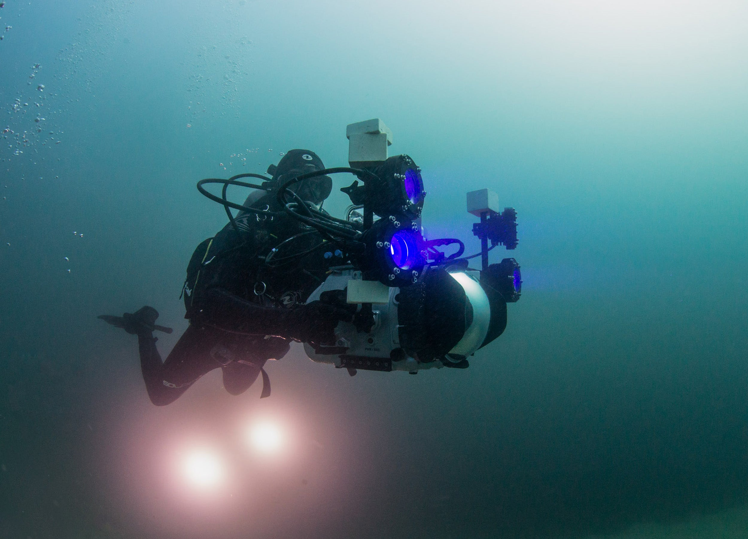 "David Gruber photographs underwater using a ""shark-eye"" camera."