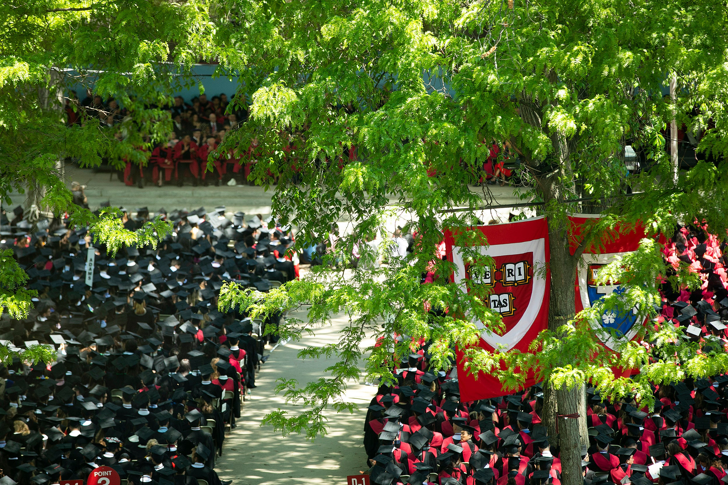 Overview of Harvard Yard during commencement.