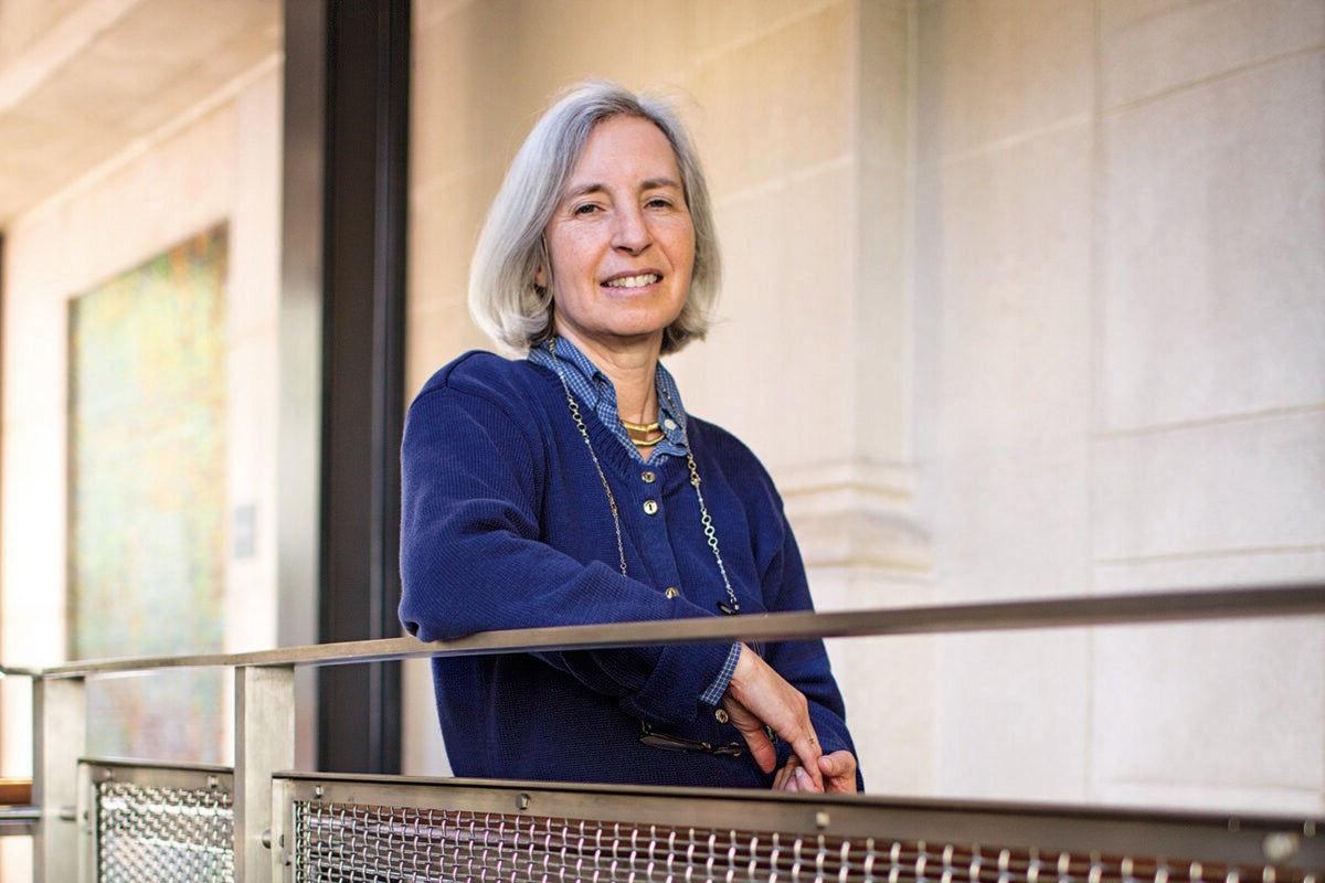 Human rights expert Martha Minow, the Carter Professor of General Jurisprudence at Harvard Law School and a Harvard University Distinguished Service Professor, has been named a University Professor, Harvard's highest faculty honor.