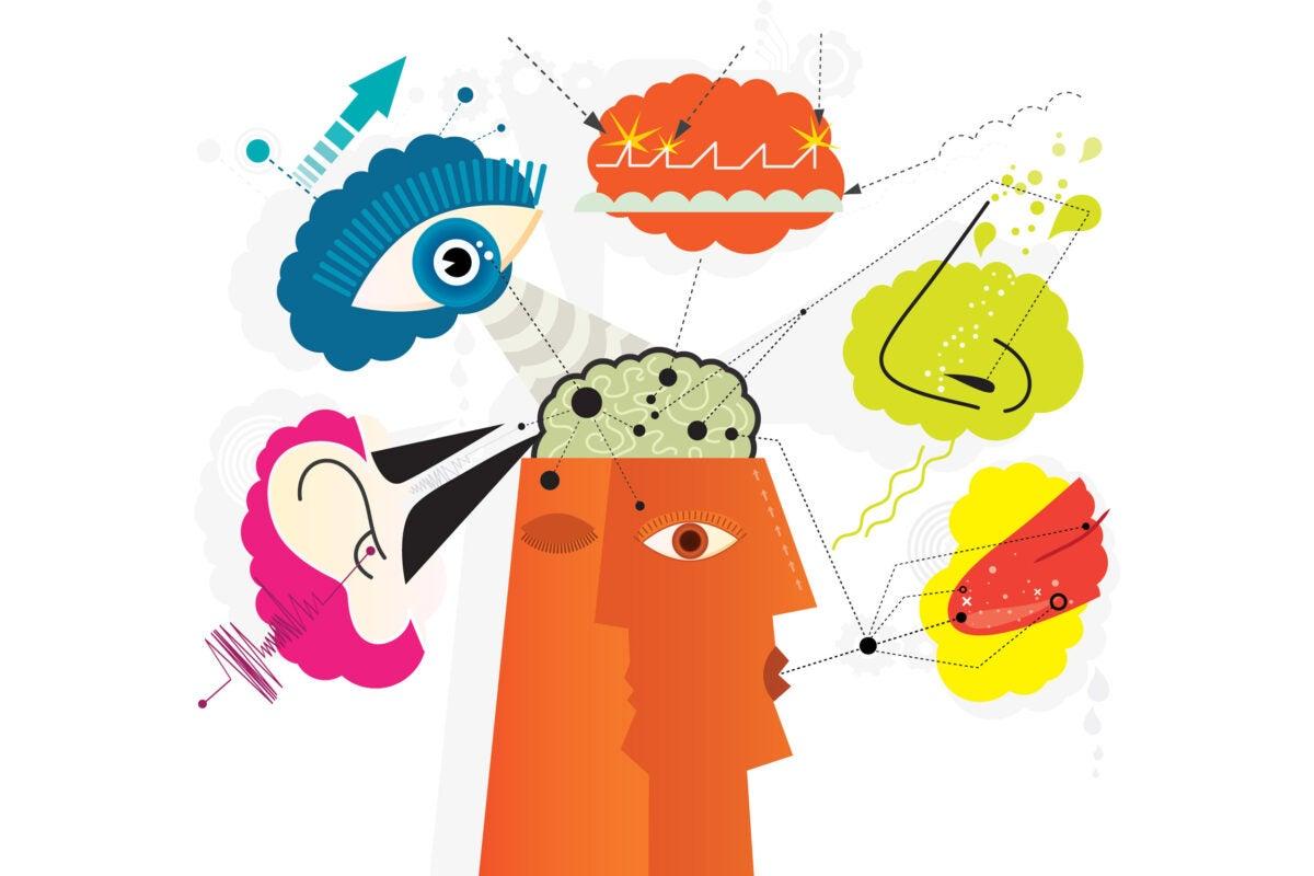 Illustration of 5 senses