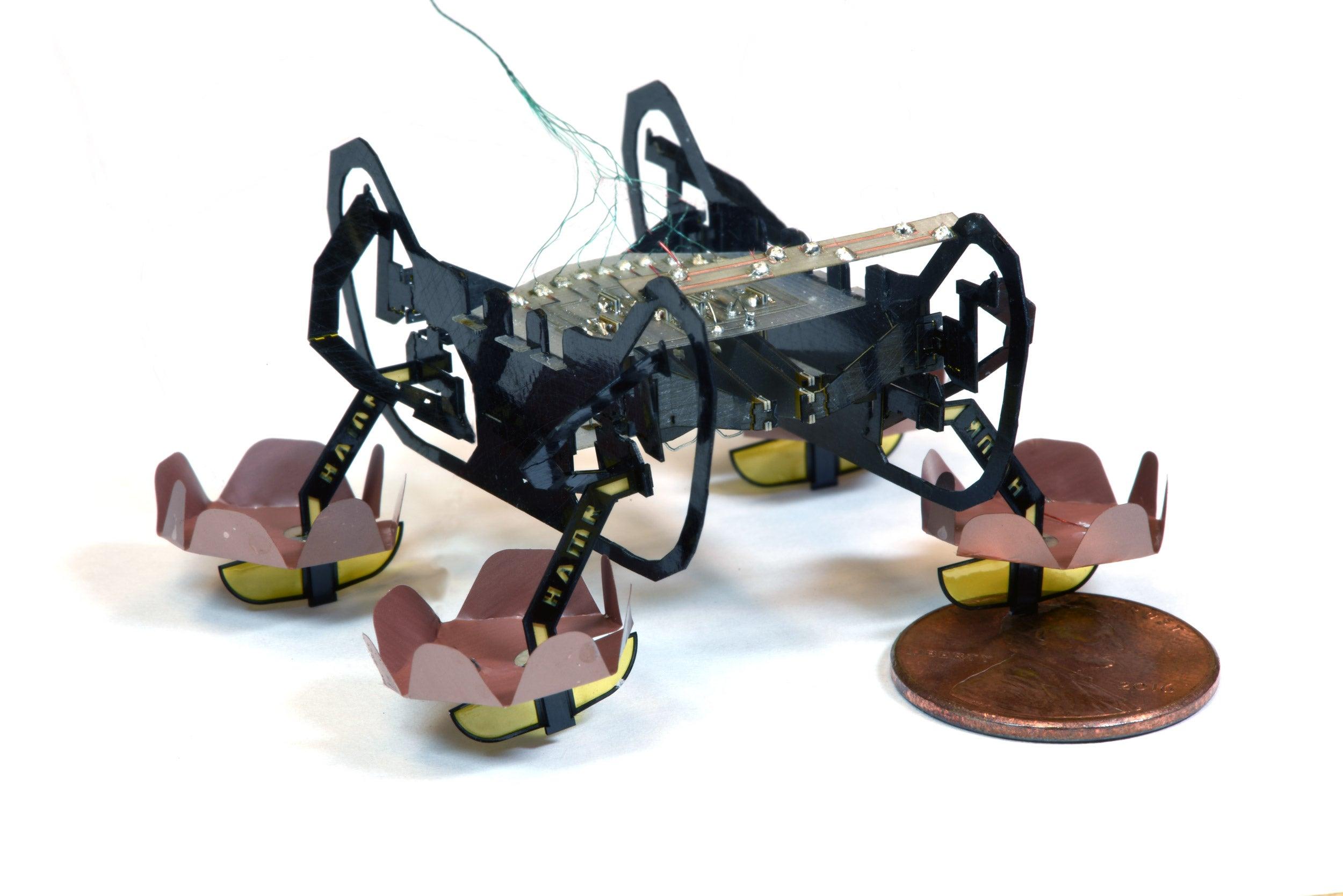 Harvard's Ambulatory Microrobot.