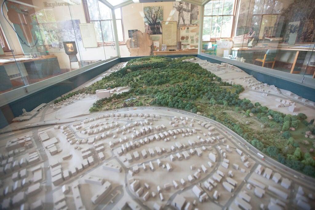 Diorama of Arnold Arboretum.
