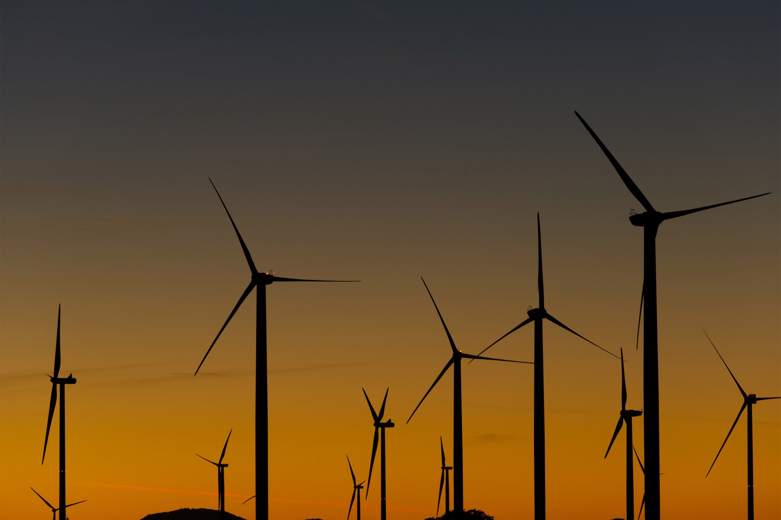 Large-scale wind power has its down side – Harvard Gazette