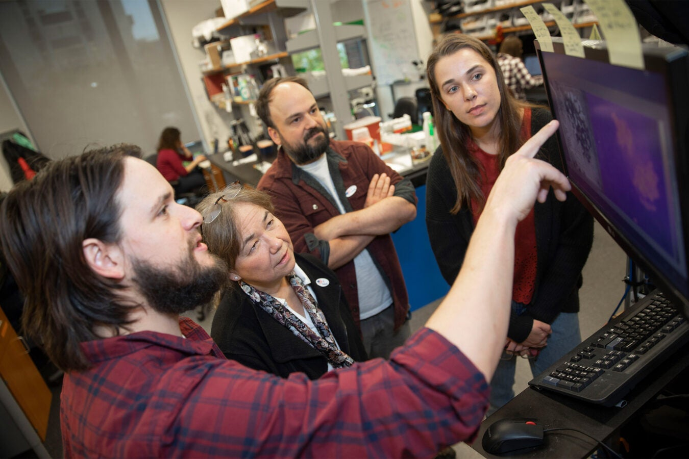 James Crall (from left) is the lead author of a new study that shows a particular class of pesticides can have dramatic effects on bees inside Northwest Labs. He is seen with co-authors, Naomi Pierce, Ben de Bivort, Andrea Brown '19.