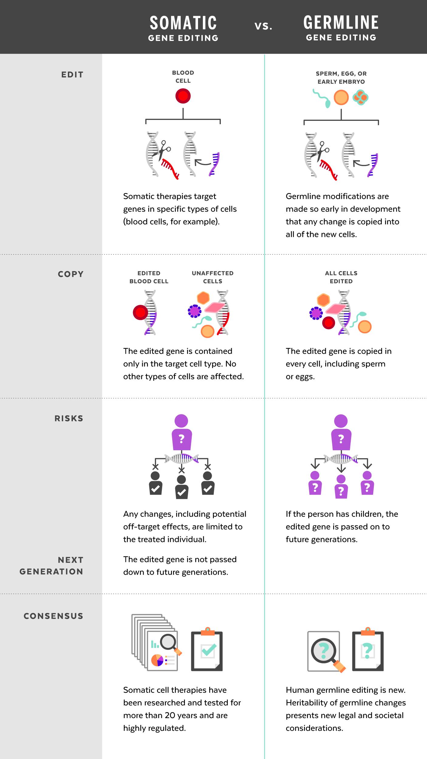 second international summit on human genome editing agenda