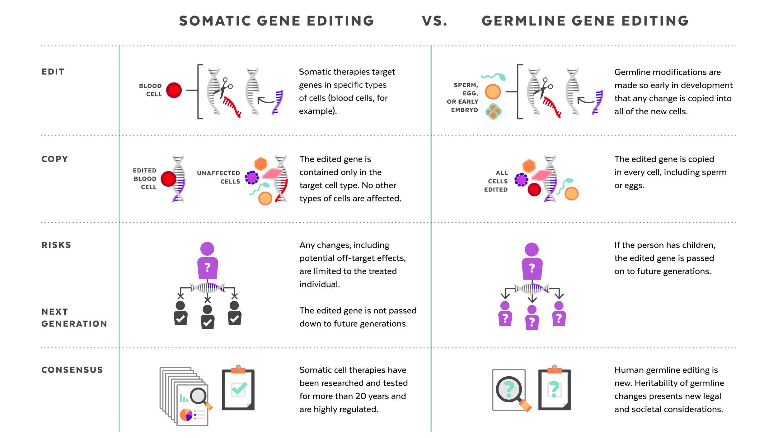 Harvard researchers share views on future, ethics of gene
