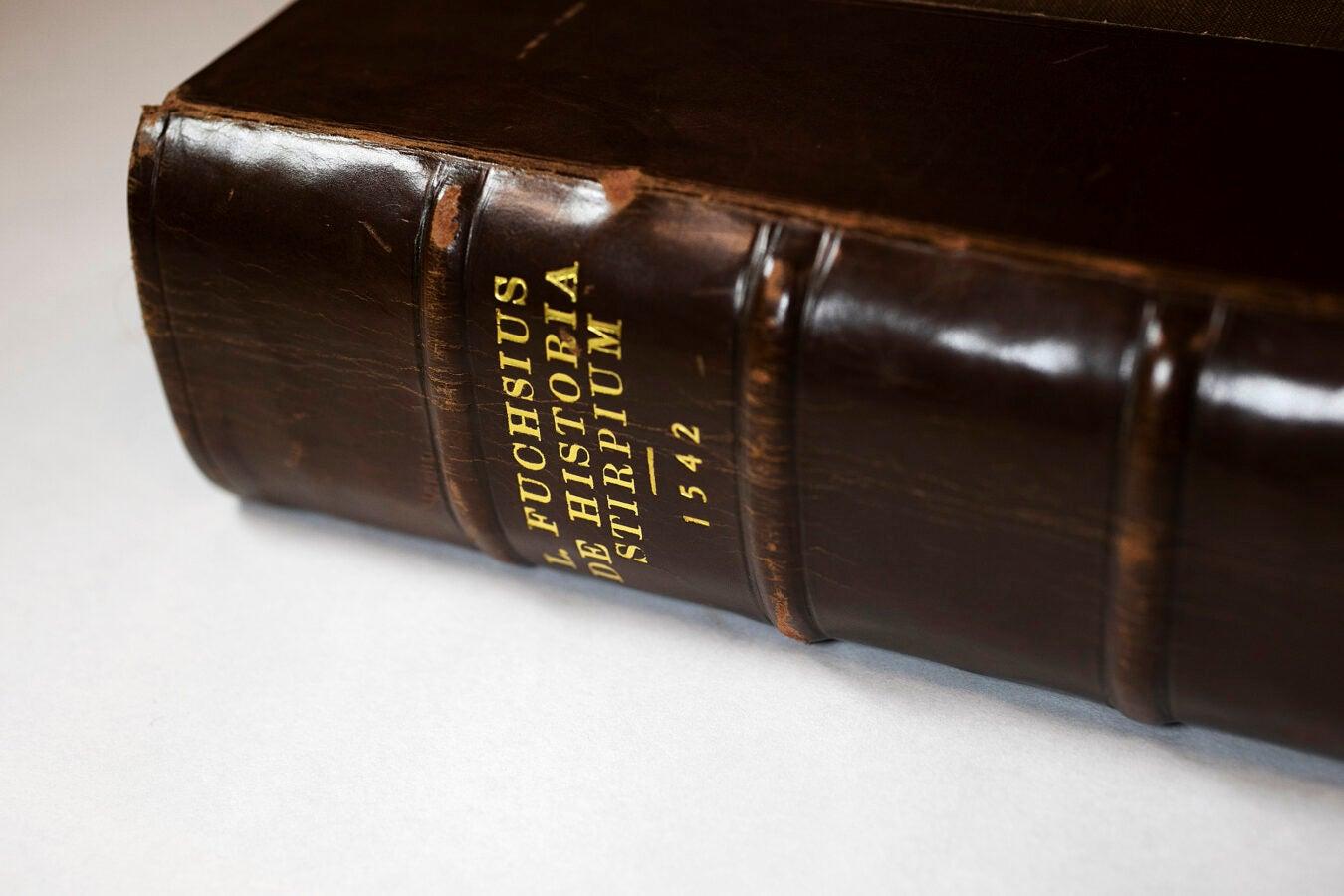 De Historia Stirpium Commentarii Insignes.
