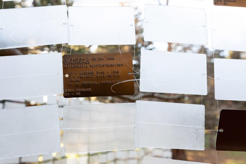 Installation at the Arboretum uses plant ID tags.