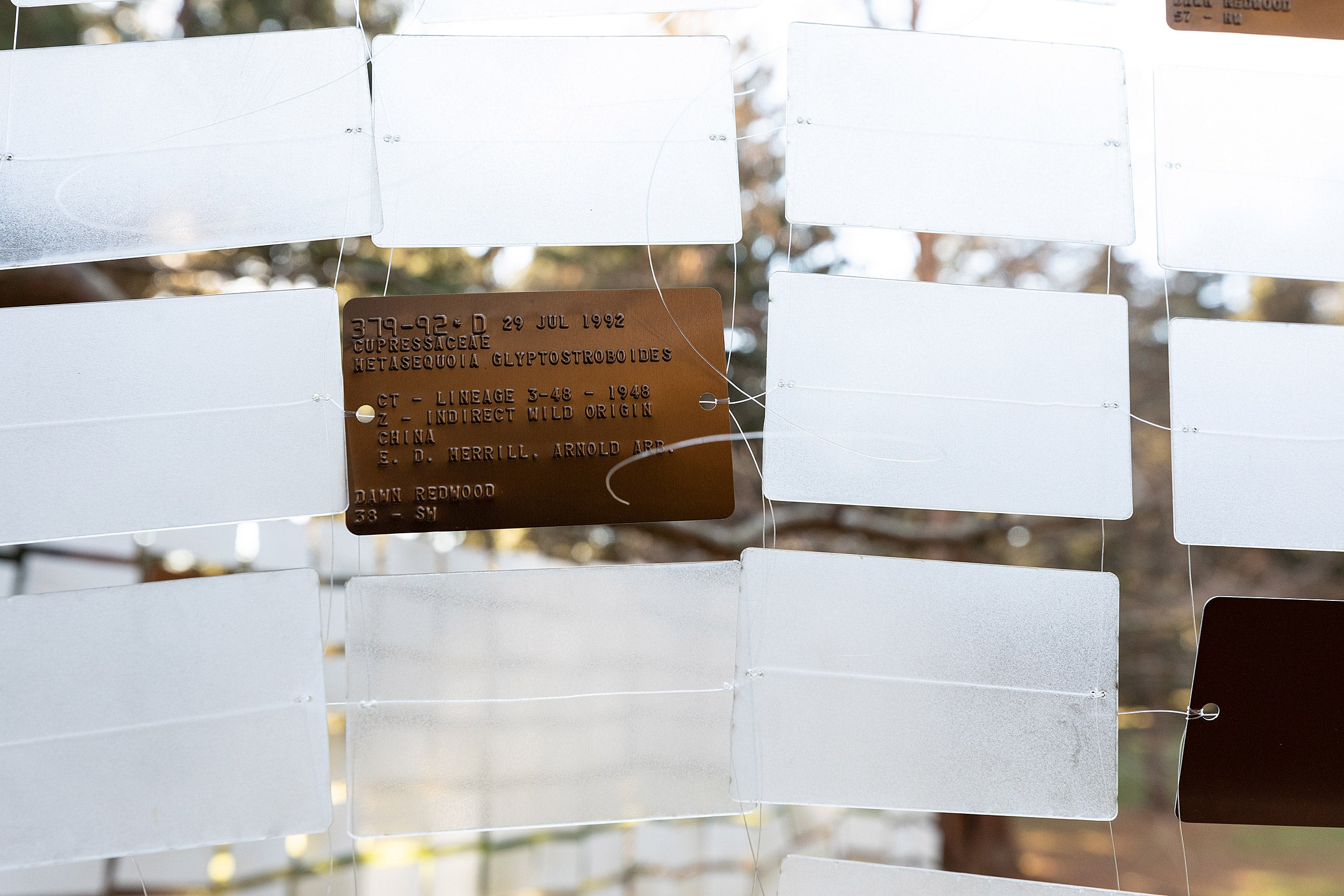 Installation at the Arboretum uses plant ID tags.