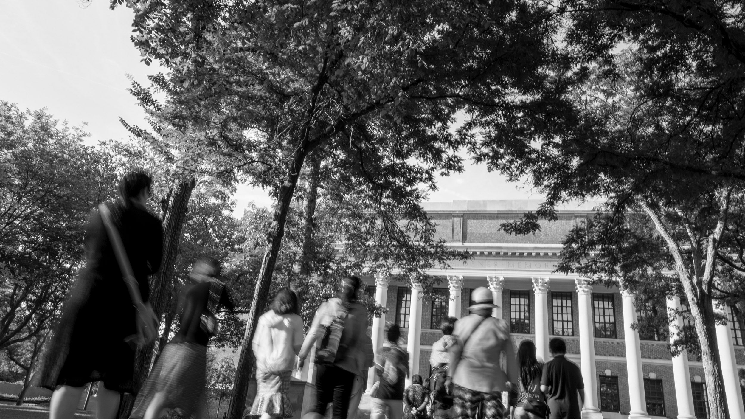 Visitors walk the path from Memorial Church toward Widener Library.